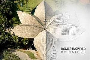 Homes Inspired by Nature