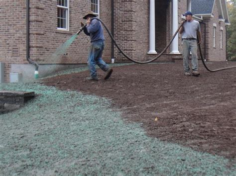 how much to hydroseed how much is hydroseeding 28 images the profitability of hydroseeding turf sod vs