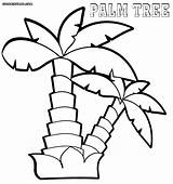 Palm Coloring Tree Pages Colouring Adults Print Adult Palmtree Colorings sketch template