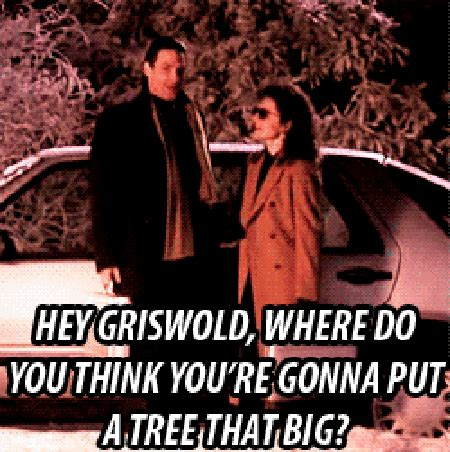 Griswold Christmas Tree Quotes by Quotes By National Lampoon Like Success