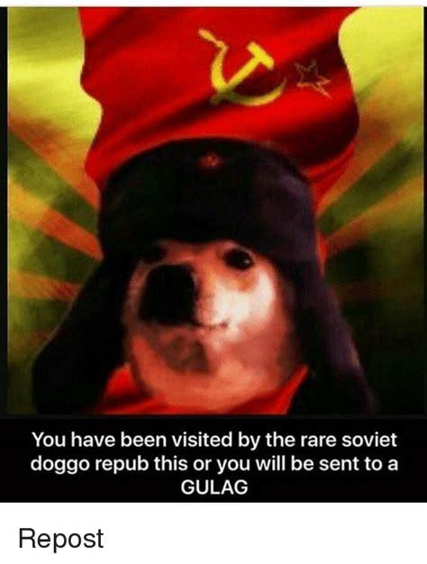 25 Best Memes About Soviet Doggo Soviet Doggo Memes