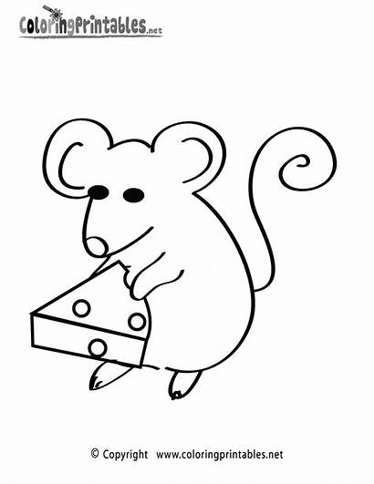 Mouse Coloring Cheese Animal Animals Printable Dogs