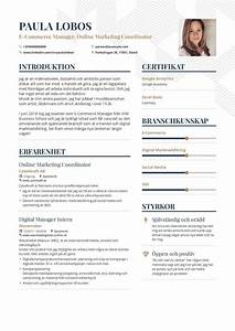 Examples Of Winning Resumes Ecommerce Marketing Resume Example And Guide For 2020