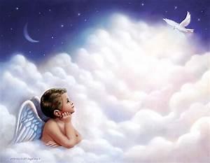 699 Angel Boy 1