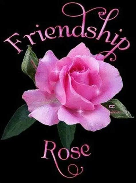 friendship rose pictures   images  facebook