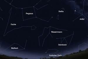 Sternzeichen Löwe Von Wann Bis Wann : steinbock astrokramkiste ~ Markanthonyermac.com Haus und Dekorationen