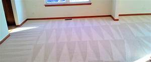 All Natural Carpet Cleaning Company. Chemical-Free Steam ...