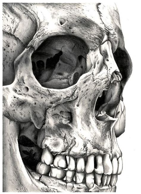 Close Skull Would Good Tattoo With Something