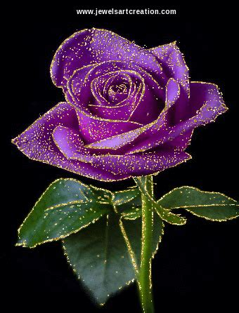 Animated Roses Wallpaper - animation free animation purple animated