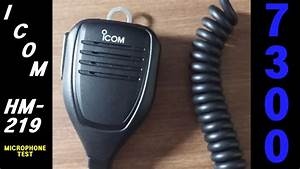 Icom 7300 Hm219 Stock Mic Over-the-air Dx Audio Test
