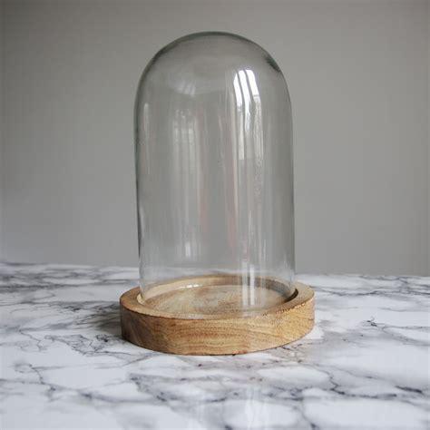 cloche en verre 21x12 cm socle bois madam stoltz howne