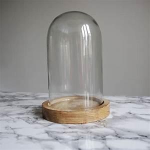 Cloche Verre Deco : cloche verre ~ Teatrodelosmanantiales.com Idées de Décoration