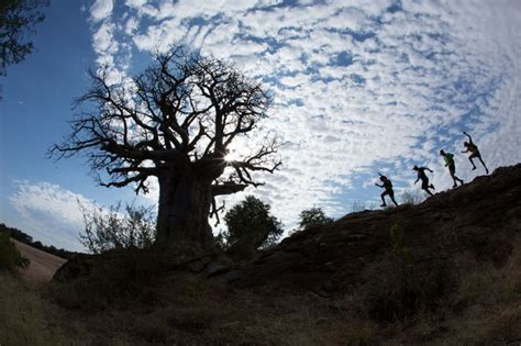 The Inaugural Mapungubwe Transfrontier Wildrun Africa