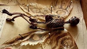 Descubren extraños esqueletos en el sótano de una casa ...