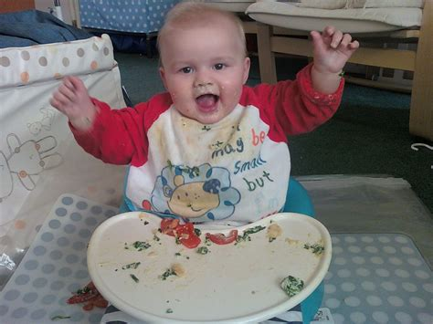 The Blog Baby Led Weaning