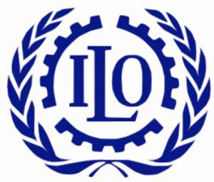 bureau international du travail bureau international du travail réseau environnement de