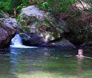 The Waterfall & Pool at Cornaa Bay - Garden Living and