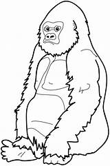 Gorilla Coloring Pages Clipart River Cartoon Baby Cliparts Cute Face Sitting Cool Down Craft Printable Cross Sheets Library Clip Monkey sketch template