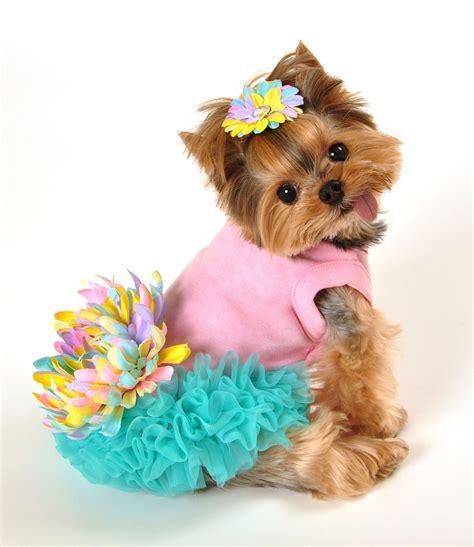 leilani dog dress   pet care fashion