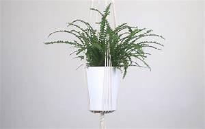 Suspension Pour Plante Interieur : suspension pour plante en macram bymadjo ellyne d co ~ Teatrodelosmanantiales.com Idées de Décoration