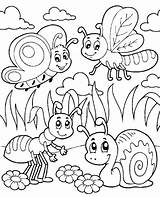 Coloring Pages Insects Insect sketch template