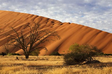 pictures on landscape blogspot african travel gateway african safaris to revitalize your body and soul