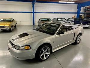 1999 Ford Mustang GT for Sale | ClassicCars.com | CC-1319099