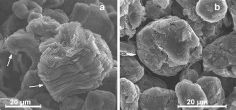 post mortem sem pictures  graphite electrodes   impregnated   scientific