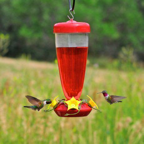 walmart hummingbird feeders pet humming bird feeder walmart canada