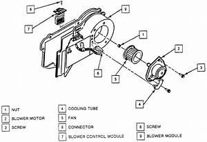 Buick Park Avenue Engine Diagram Auto Wiring  Buick  Auto Wiring Diagram