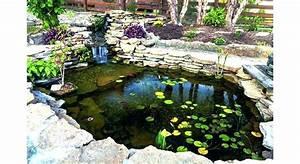 Fontaine Pour Bassin A Poisson : fabrication filtre bassin poisson exterieur akoi ~ Voncanada.com Idées de Décoration