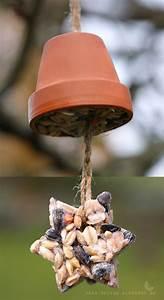 Vogelfutter Selbst Herstellen : die besten 25 vogelfutter ideen auf pinterest futter f r wilde v gel vogelfutter handwerk ~ Orissabook.com Haus und Dekorationen