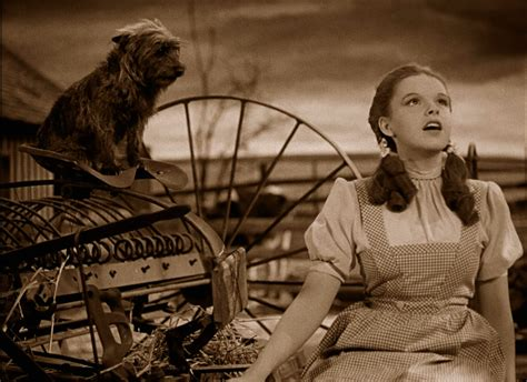 Incredible Behind The Scene Secrets From The Wizard Of Oz