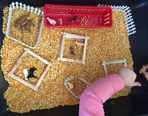 farm activities ms s preschool 700 | Farm Animal Activities in the Preschool Classroom Farm Sensory Bin