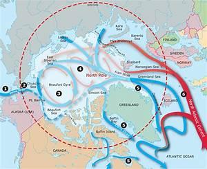 Polar Data Maps
