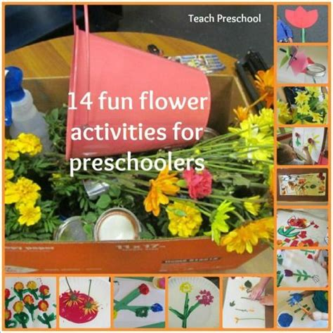 garden theme for preschool 25 b 228 sta preschool garden id 233 erna p 229 560