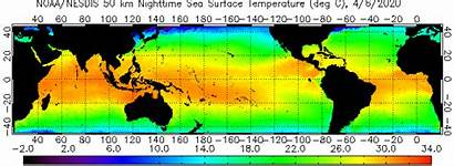 Temperature Surface Sea Sst Animation Global Night