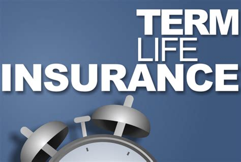 This means whole life insurance rates will. Term Life Insurance   Term life insurance, Life insurance, Term life insurance quotes