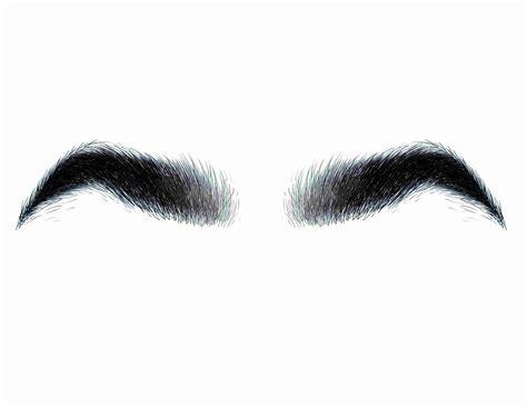 bushy eyebrows   love drawing  illustration