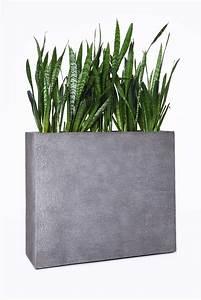 Pflanzkübel Raumteiler Fiberglas : pflanzk bel raumteiler 90 cm hoch bestseller shop f r m bel und einrichtungen ~ Whattoseeinmadrid.com Haus und Dekorationen