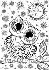 Coloring Animal Mandala Eule Owl Adult sketch template
