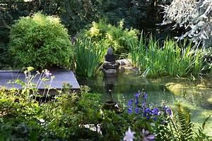 Pflanzen Für Teichumrandung : pflanzen f r den gartenteich ~ Michelbontemps.com Haus und Dekorationen