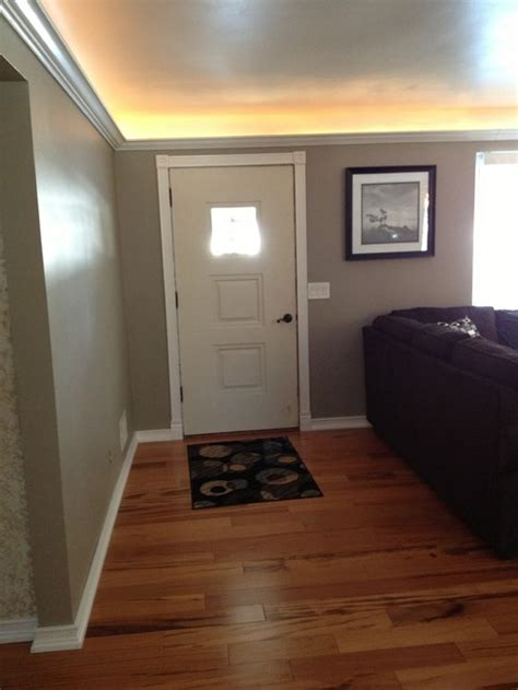 Any Ideas Entrance And Living Room Divider?