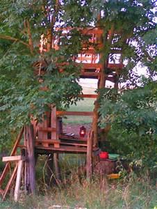 Constructeur Cabane Dans Les Arbres : une cabane dans les arbres ~ Dallasstarsshop.com Idées de Décoration