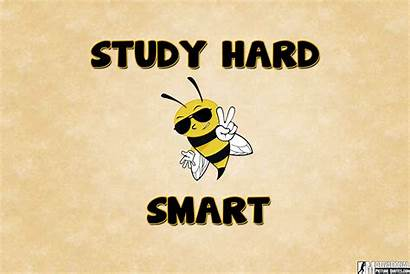 Study Hard Keep Calm Wallpapers Smart Insbright