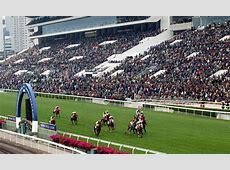 2019 Hong Kong International Horse Racing Packages