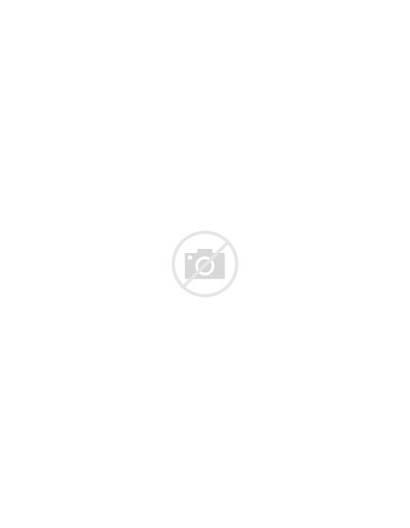 Lentiviral Vectors Glioblastoma Cancers