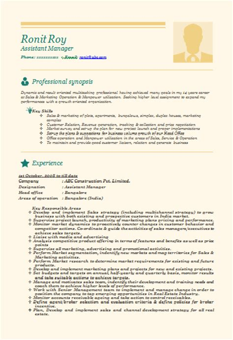 resume format marketing professional 10000 cv and resume sles with free professional beautiful resume sle doc