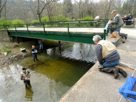 Pennsylvania Fish And Boat Commission Stocking Schedule by Pa Fish And Boat Commission Begins Trout Stocking Pine