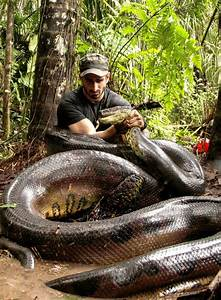 This Man Was Eaten Alive By A Giant Snake. We Asked ...